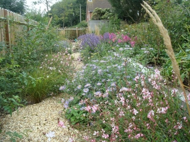Gravel Garden - Hampshire
