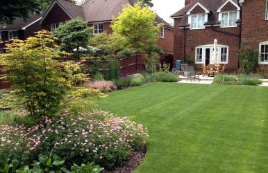 Family Garden Design (Hampshire)