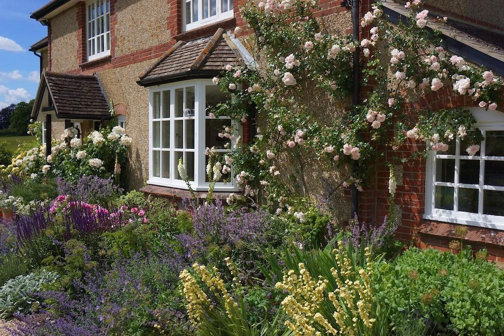 Cottage Garden Design (Hampshire) | Amy Perkins Garden ...