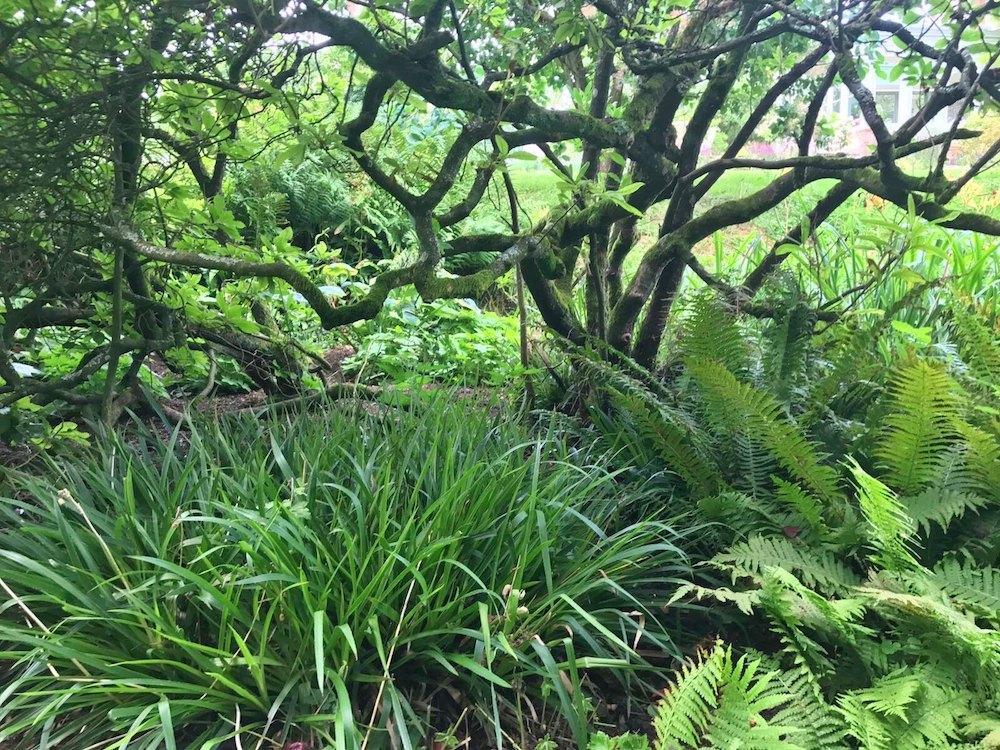 Country Garden Design, Hampshire | Amy Perkins Garden ...