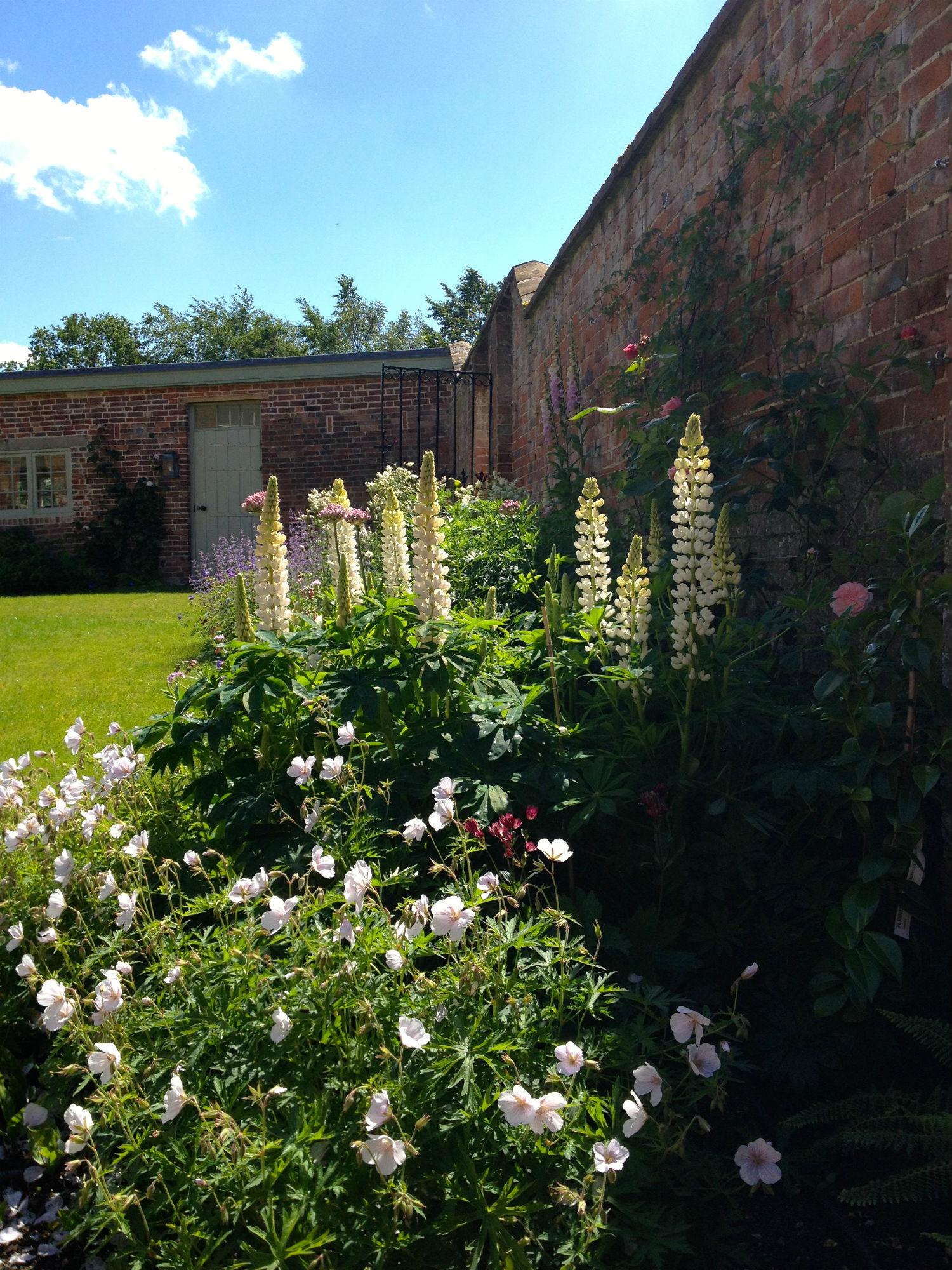 Country estate hampshire amy perkins garden design for Garden design hampshire