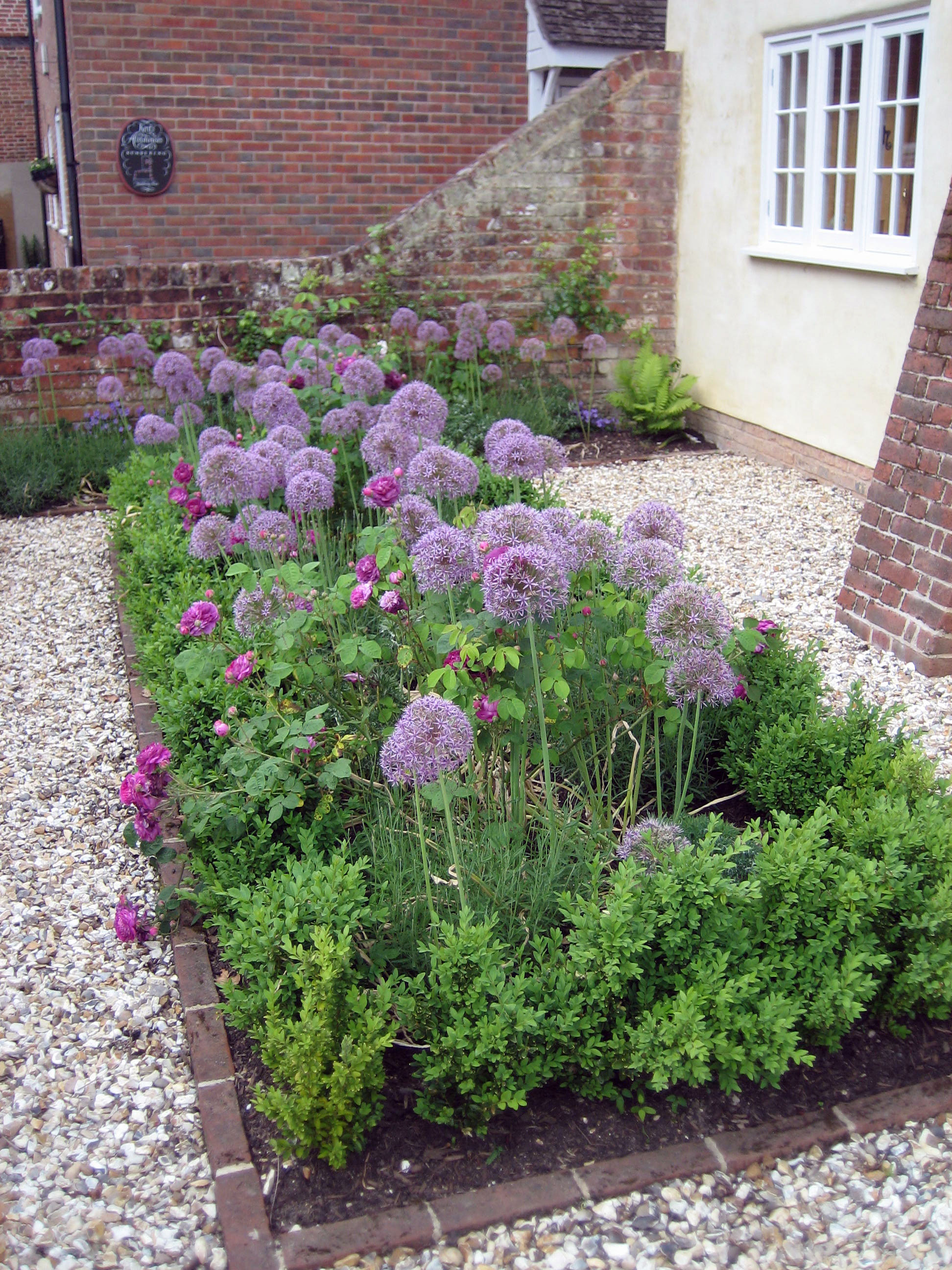 Cottage Garden Romsey Hampshire Amy Perkins Garden Design